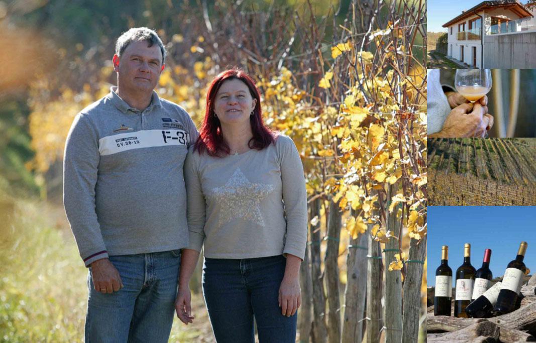 Ivan Vogrič in Katja Roblek, vinogradništvo Vogrič